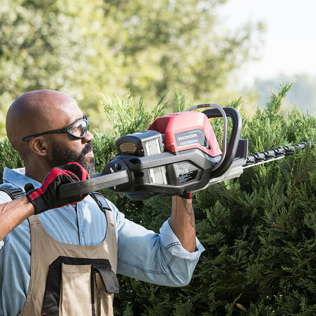 Model trimming hedge with Honda cordless hedge trimmer in garden location.