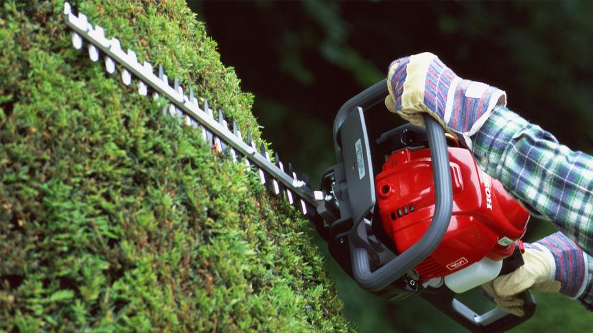 Honda Heckenscheren, Nahaufnahme im Einsatz, Gartenumgebung.