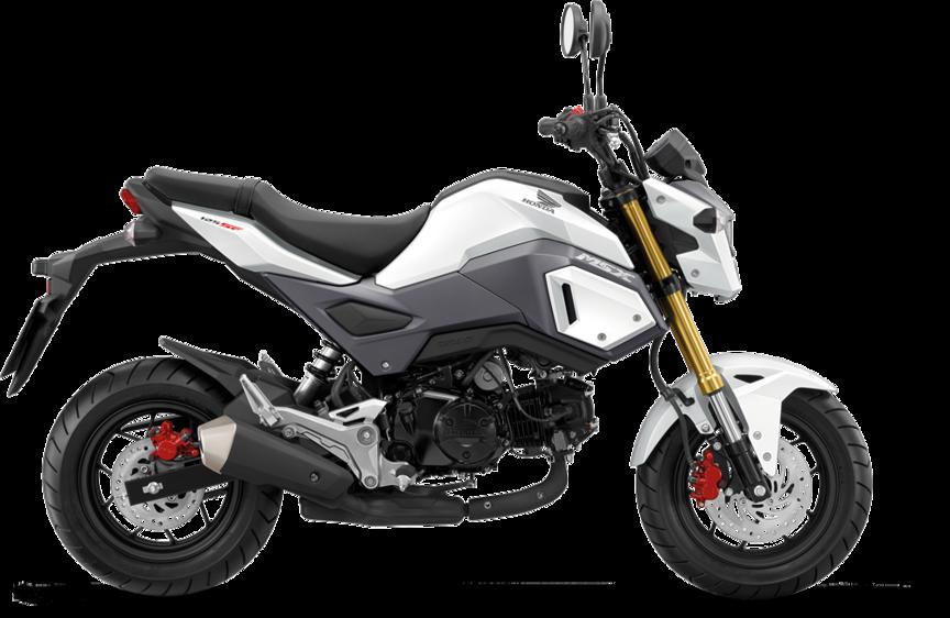 Übersicht – MSX125 2016 – Leichtkrafträder – Modellpalette ...